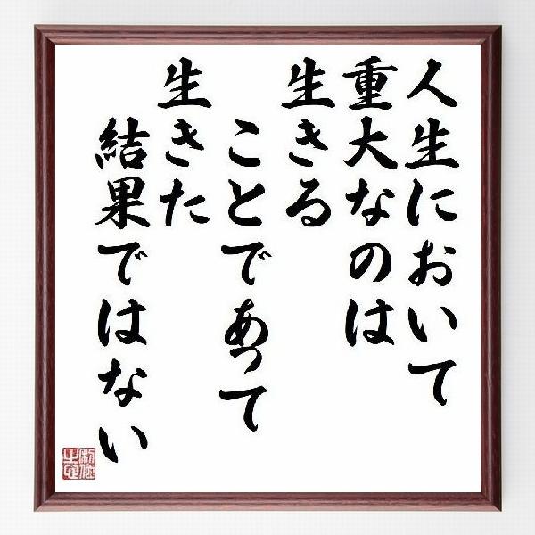 偉人の言葉、名言、格言、座右の銘『人生において重大なのは生きることであって、生きた結果ではない』ゲーテ
